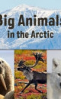 Big Animals in the Arctic (English)