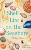 Shell Life on the Seashore