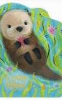 A Little Otter