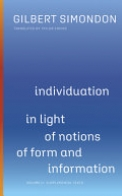 Individuation in Light of Notions of Form and Information