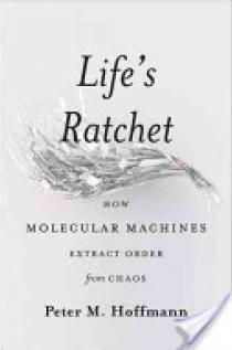 Life's Ratchet