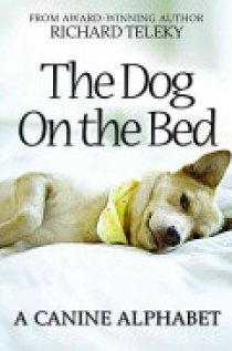 Dog on the Bed