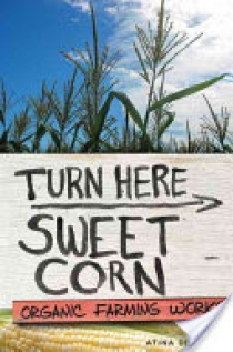 Turn Here Sweet Corn
