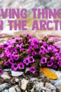 Living Things in the Arctic (English)