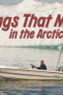 Things That Move in the Arctic (English)