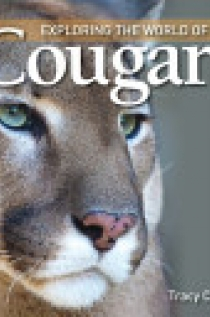 Exploring the World of Cougars