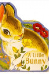 A Little Bunny