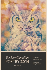 Ottawa Launch of The Best Canadian Poetry in English, 2014 with David O'Meara, Pearl Pirie, Brent Raycroft & Shane Rhodes