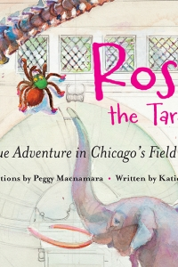 Adventure with Auntie Katie Macnamara, author of Rosie the Tarantula